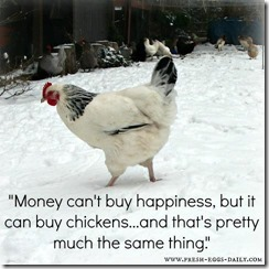 chickens buy happiness